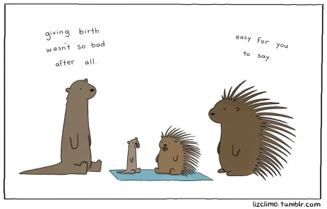 http://lizclimo.tumblr.com/post/55372617977/hey-guys-so-im-having-a-baby-and-in-an-effort
